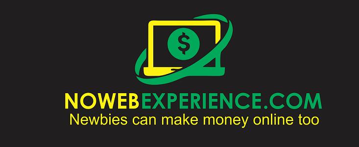 No Web Experience